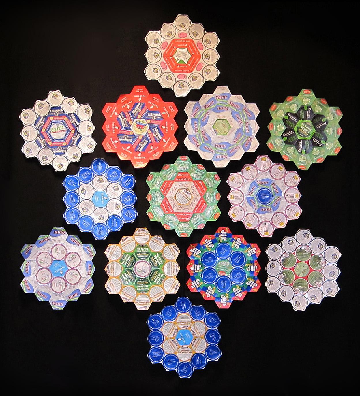 cheri-kopp-not-your-grandmas-flower-garden-quilt-13-blocks.jpg